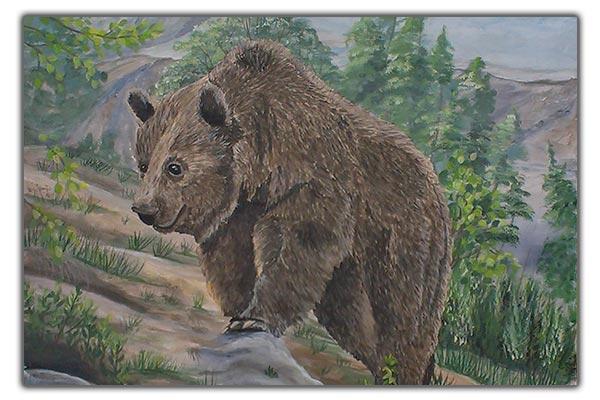 Bild Bär